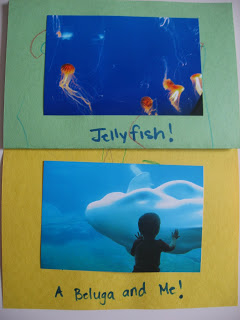 I Know What You Did Last Weekend – Homemade Picture Books