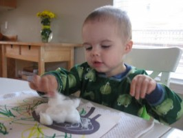 Five Senses – Touch and Learn Cotton Ball Sheep