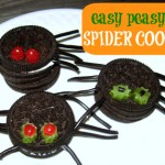 No Bake Spider Cookies