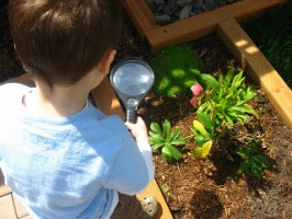 Investigate The Earth – Earth Day Activity