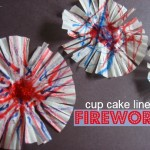 Fireworks Craft !