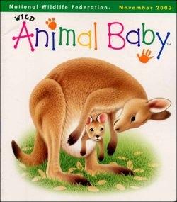 wild animal baby