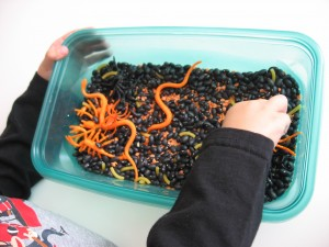 Fall Sensory Tub Ideas