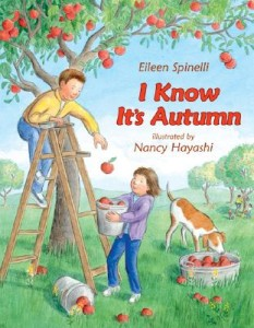 12 Fun Books For A Fall Book Round Up