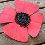 Remembrance Day and Veteran's Day