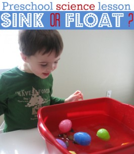 Preschool Science – Sink or Float?