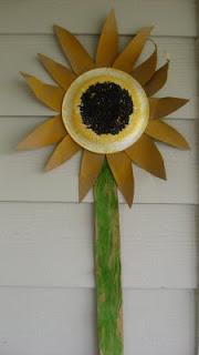 rp_sunflower-017.jpg