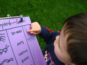 Find and Count Bug Hunt