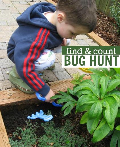 find & count bug hunt nature activity