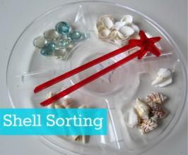 Shell Sorting