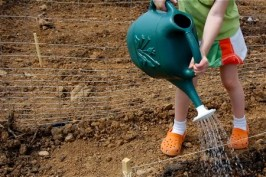 Gardening With Kids and Giveaway!
