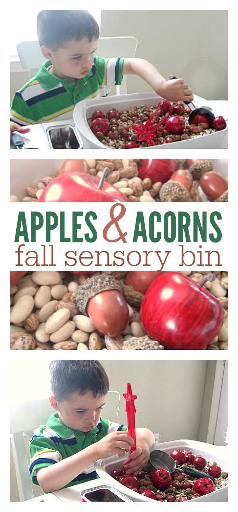 fall sensory bin for preschool