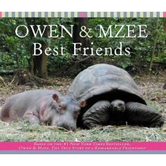 owen and mzee