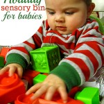 Holiday Sensory Bin For Babies
