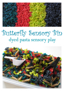 Butterfly Sensory Tub Activity