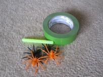 Spider Web Walking