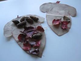 Acorn Nature Collage