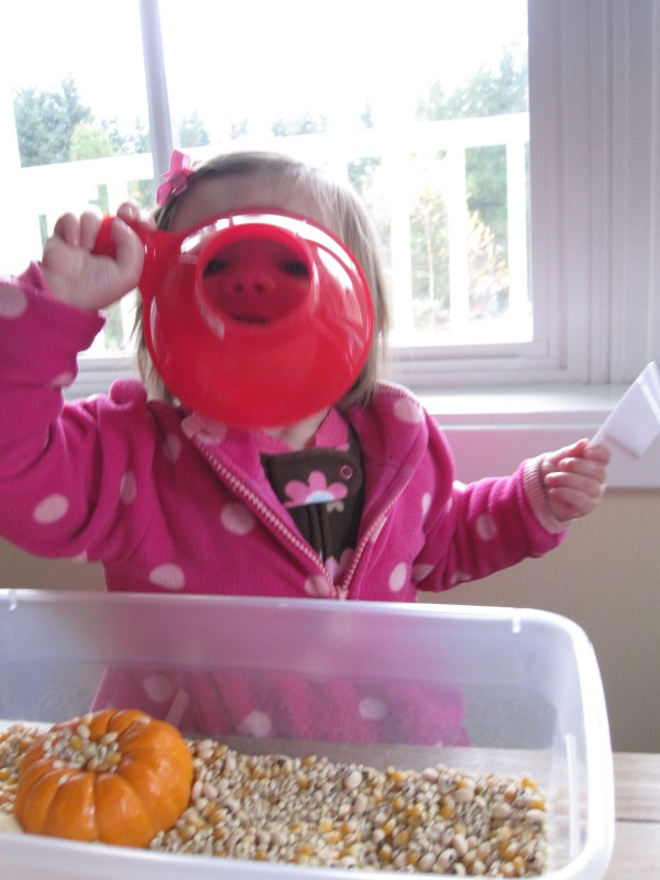 Sensory Tub For Toddlers