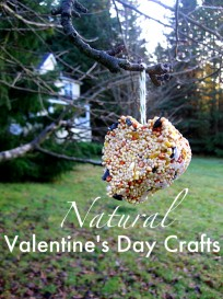 Natural Valentine's Day Crafts