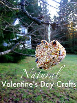 Natural DIY Valentine's Day Crafts