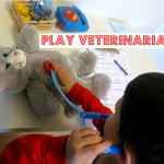 Pretend Play – Vet Clinic