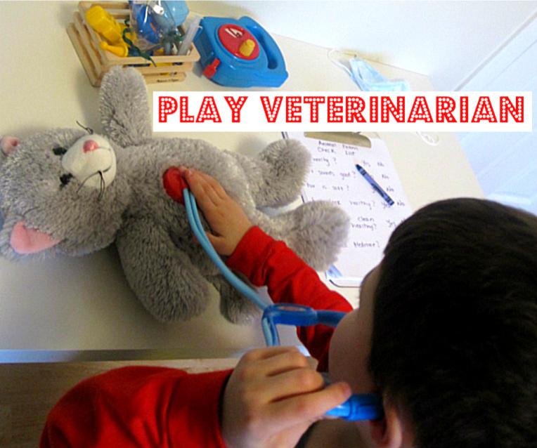 Pretend Play Vet Clinic No Time For Flash Cards