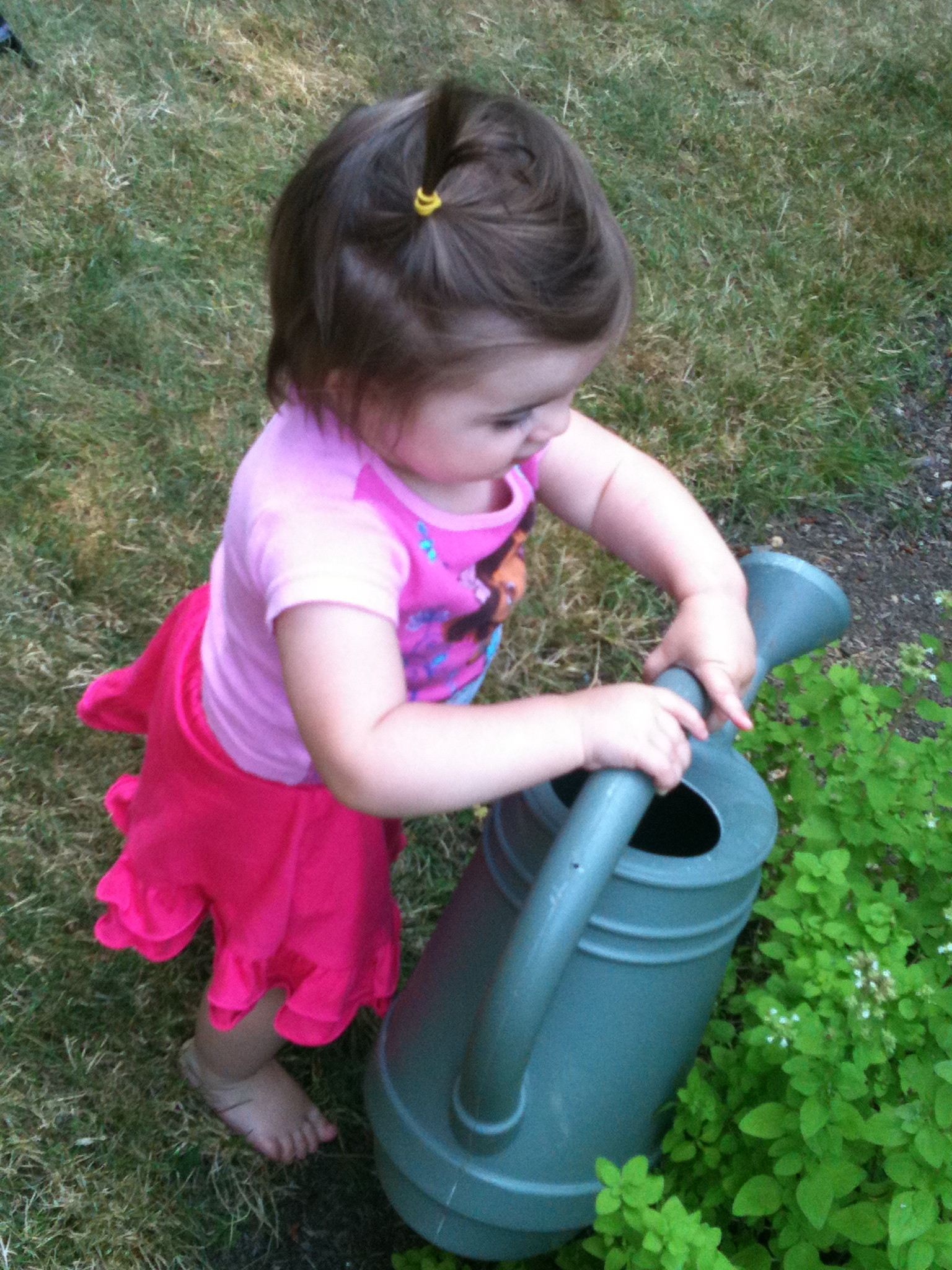 75 tv free activities for toddlers for Garden activities for toddlers