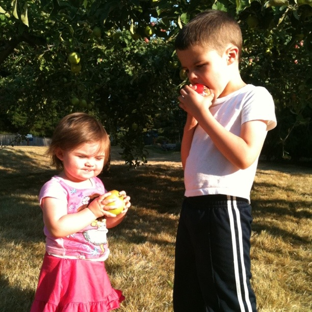 50 Simple Outdoor Activities For Kids No Time For Flash Cards