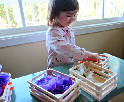 Color Sorting Activity with Flowers