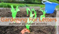 alphabet for starters