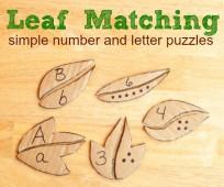 leaf numbers
