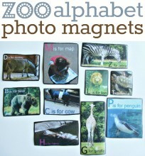 zoo alphabet magnets for kids