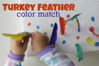 'turkey feather color match' from the web at 'https://www.notimeforflashcards.com/wp-content/uploads/2012/11/turkey-feather-color-match--204x136.jpg'
