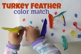 Feather Color Match
