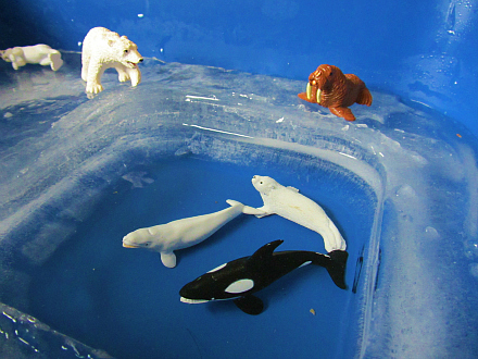 arctic sensory play