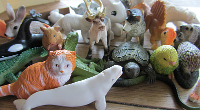 pet or wild animal sorting activity