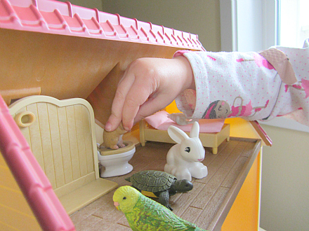 house pets play potty training