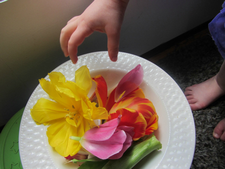 sticky wall flower activity for toddlers