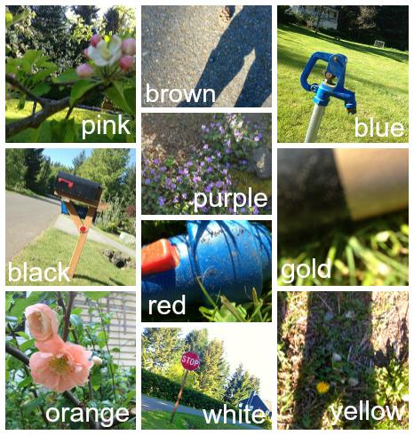 iphone color safari collage