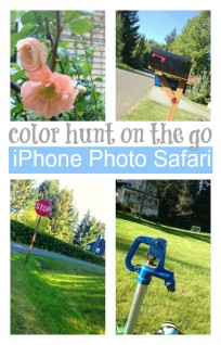 color hunt