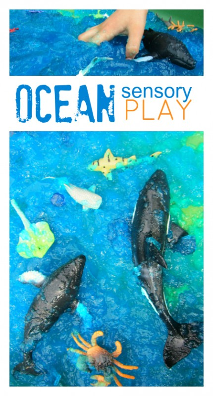 rp_ocean-play-for-kids-sensory-tub-430x800.jpg