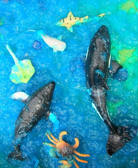 ocean sensory play dgd