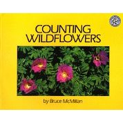 counting wildflowers