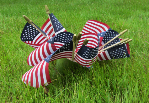 flag day outside activity for kids