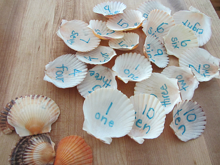 math games with shells