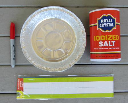 dollar store salt tray