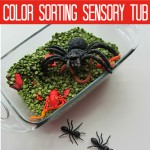 Color Sorting Sensory Tub