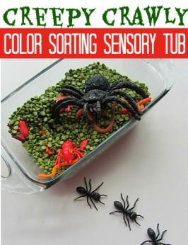 Color Sorting Sensory Tub