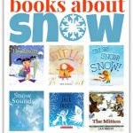 Books About Snow