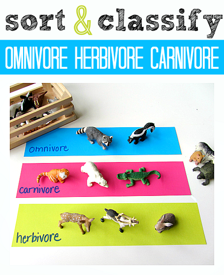 is a mouse a carnivore herbivore or omnivore